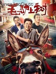 《毛驴上树》电影海报