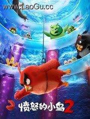 《愤怒的小鸟2 普通话版》电影海报