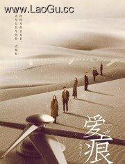 《爱·之痕》电影海报