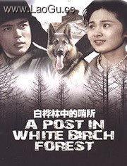 《白桦林中的哨所》电影海报