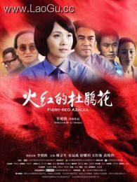 《火红的杜鹃花》海报