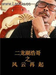 《二龙湖浩哥之风云再起》海报