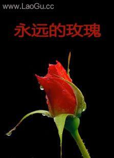《永�h的玫瑰(微�影)》海��