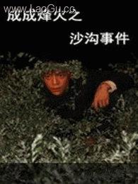 《成成烽火之沙沟事件》海报