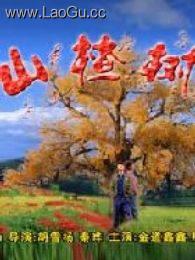 《山楂树》海报