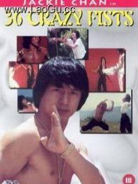 《三十六迷形拳》海报