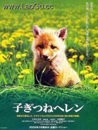 《生命奇迹小狐狸》海报