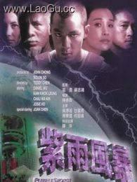 《紫雨风暴》海报