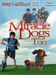 《天降神犬2》海报