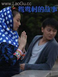 《鸳鸯村的故事》海报