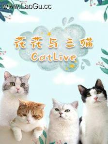 花花與三貓CatLive