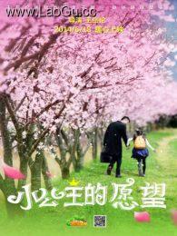 《小公主的愿望》海报